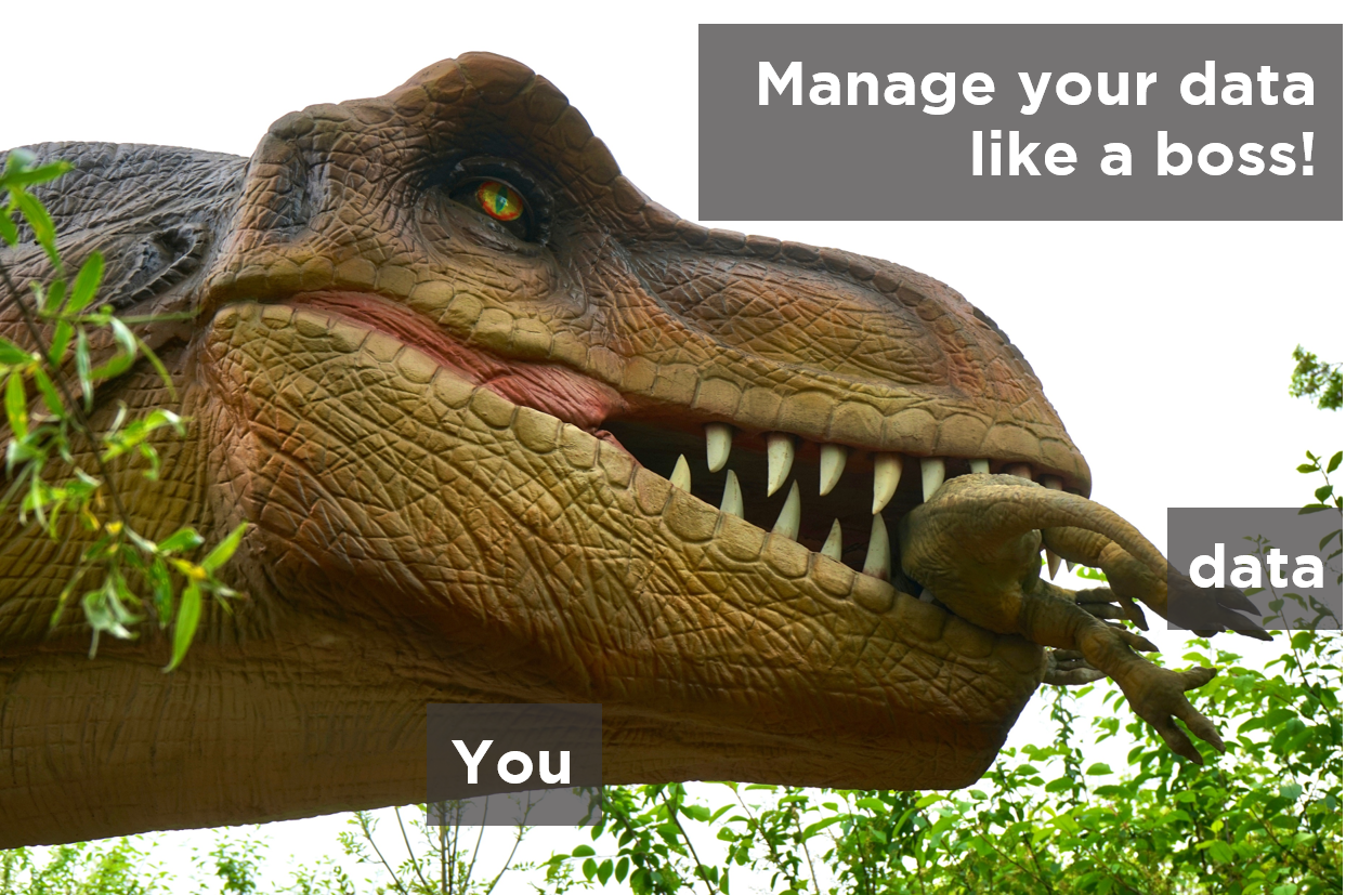 Manage your data like a boss!